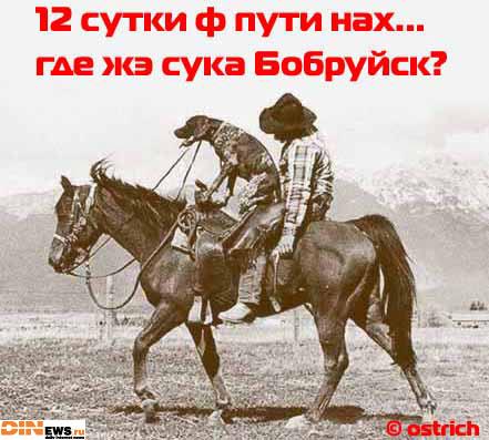 12 суток ф пути... где же Бобруйск???