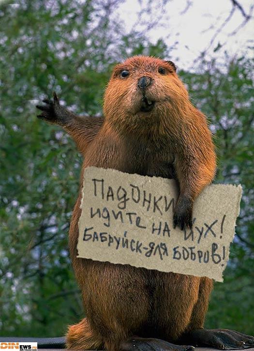 Падонки, идите на х.. Бабруйск для бобров!