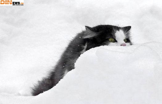 Скоро уже зима! Все готовы?