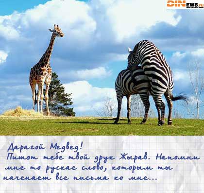 Письма из Африки...