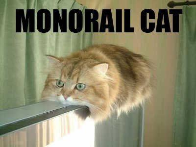 Monorail cat