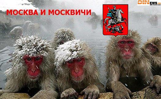 Москва и москвичи!
