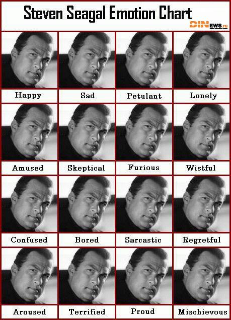 Steven Seagal Emotion Chart