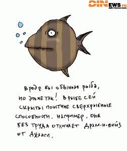 Вроде бы обычная рыба...
